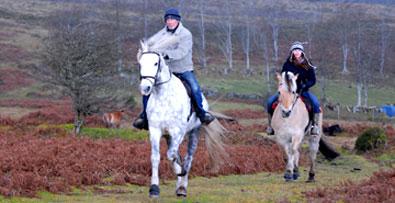 horseriding395px